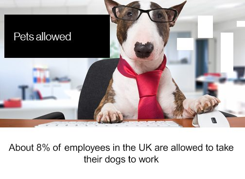 Friday Factoids, pets allowed, about 8% of employees in the UK are allowed to take their dogs to work