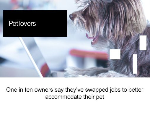 Pet lovers, one in ten owners say they've swapped jobs to better accommodate their pet