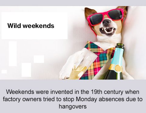 wild weekends, weekends were invented in the 19th century when factory owners tried to stop Monday absences due to hangovers